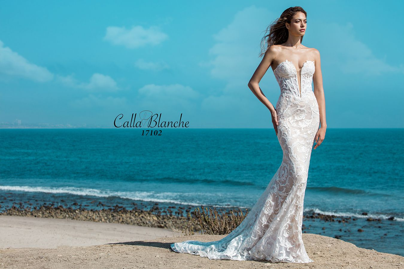 Arielle Wedding Dress Style 17102