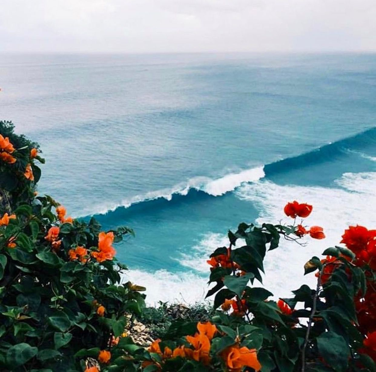 Beautiful Nature Los Angeles: Pacific Beach, San Diego In 2019