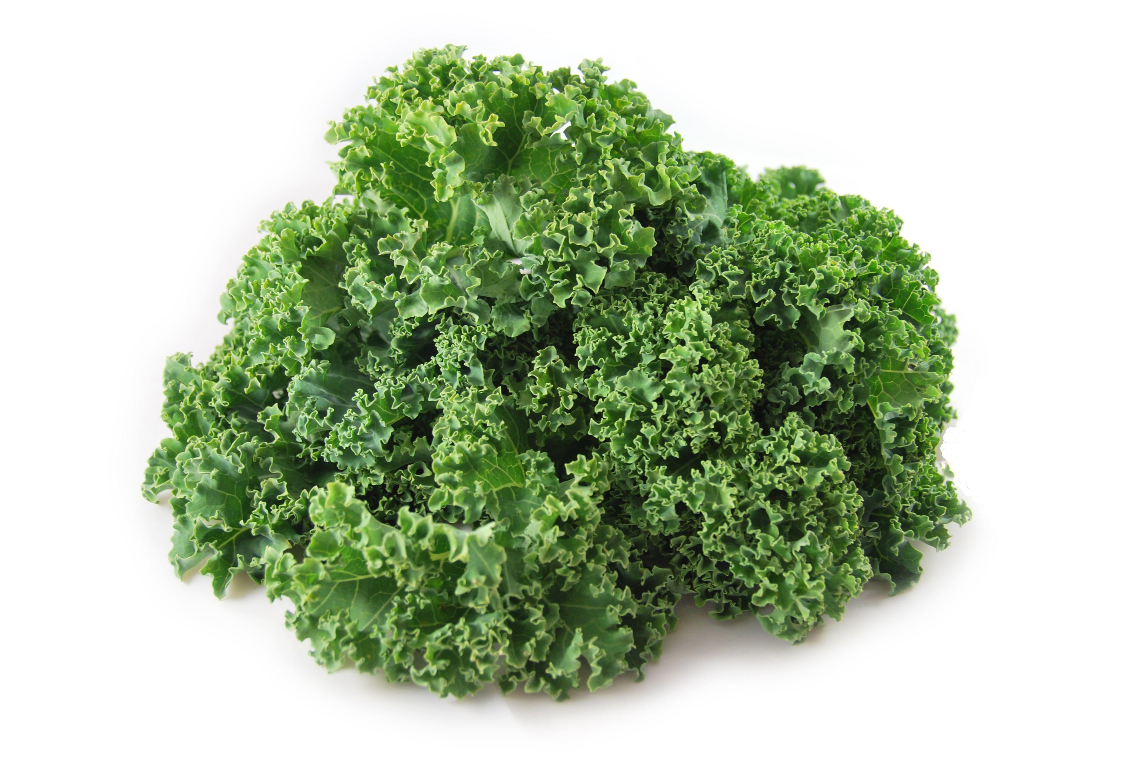 Jarmuż to warzywo z rodziny kapustowatych. Jego liście są pokarbowane na brzegach, w kolorze intensywnie zielonym lub fioletowym. Smak ma pikantny z nutką goryczy. Jarmuż był bardzo popularny w średniowieczu, a starożytności uprawiano go jako roślinę jadalną i ozdobną. Warzywo zawiera dużo chlorofilu, który ma… Czytaj dalej...