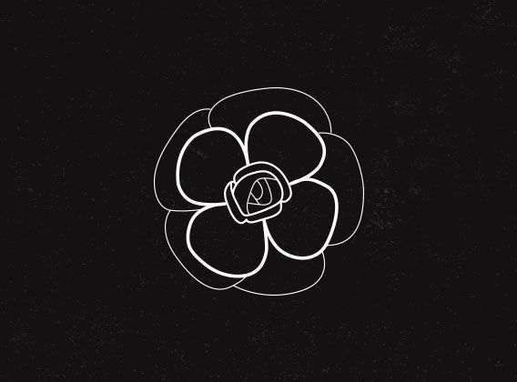 Chanel Icons Illustration Camellia Flower By Caley Ostrander
