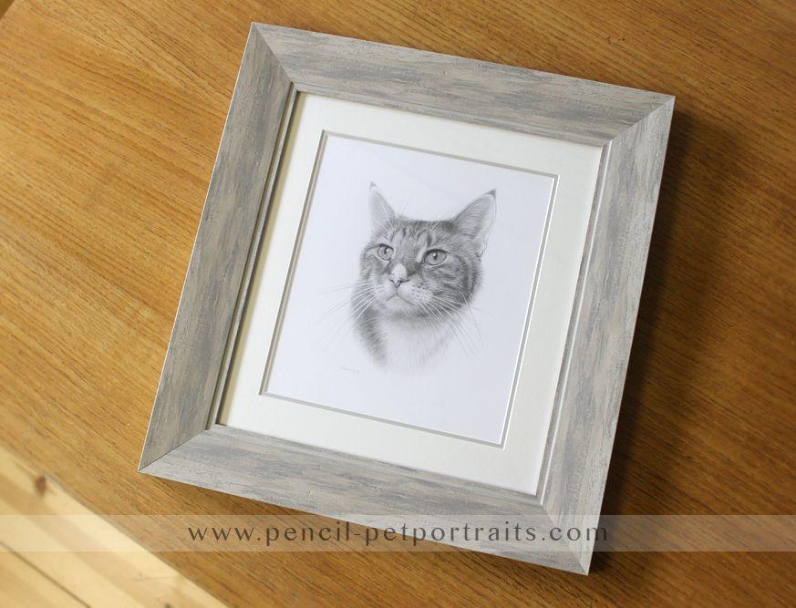 Pet portraits in pencil framed in Windsor Wash | Pet Portraits ...