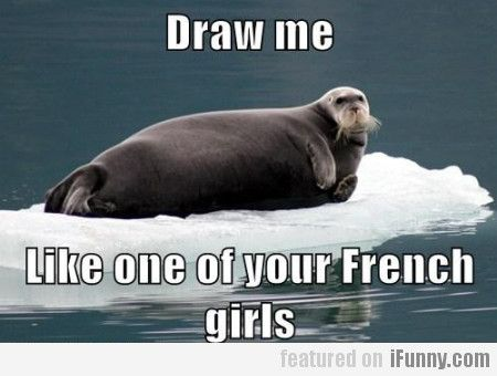 Draw Me Like One Of Your French Funny Memes About Girls Funny Animal Memes Animal Memes