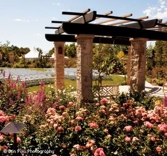 Red Butte Garden Rose Garden Ceremony Dream Wedding In 2019