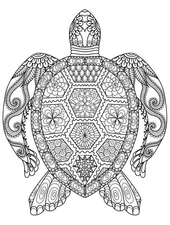 Adult Coloring Pages: Turtle | Art | Pinterest | Mandalas, Colorin y ...