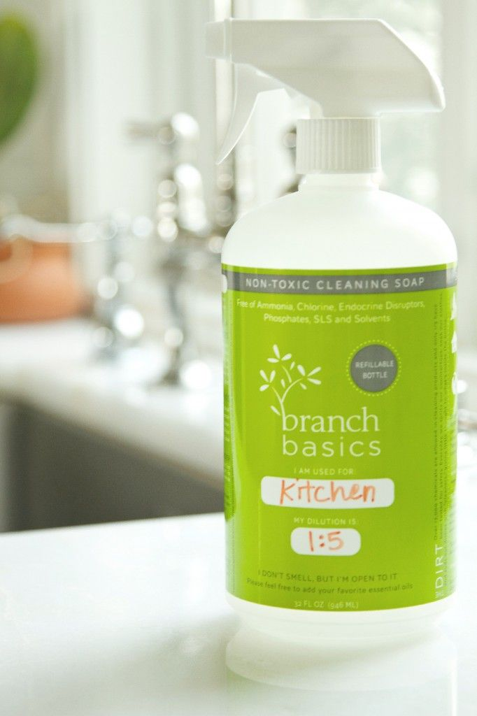 Branch Basics - My Favorite Non-Toxic, All-Purpose Cleaner - Fall ...