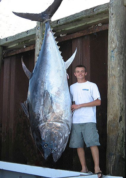 Giant Bluefin Tuna Fishing In Massachusetts Fishbox Fans