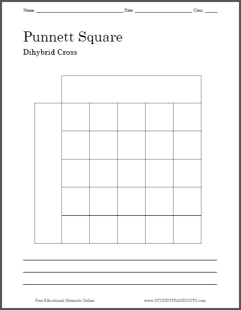 punnett square dihybrid cross worksheet free to print pdf file two versions one with a. Black Bedroom Furniture Sets. Home Design Ideas