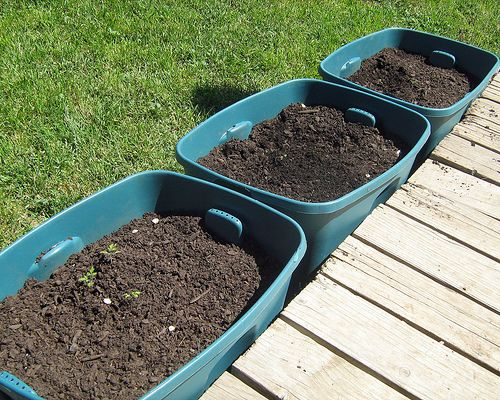 container gardening ideas for vegetables I like this Idea but