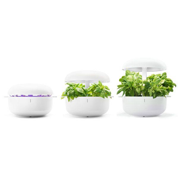 Plantui Smart Garden, white