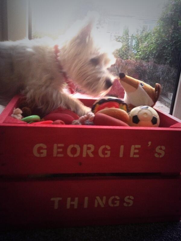 Georgia in her Toys