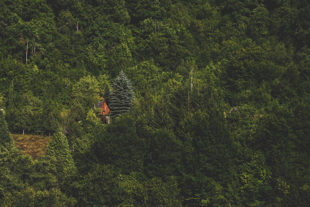 Cabin Porn™          – Cabin in the Dinaric Mountains, Bosnia &...