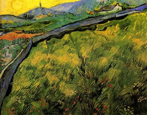 Field of Spring Wheat at Sunrise - Vincent van Gogh
