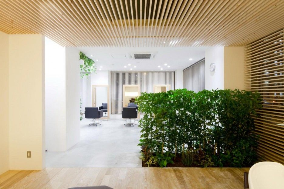 Hair Salon Design: Comfort And Relaxing Atmosphere : Striking Hair Salon  Interior With Plants Room Divider
