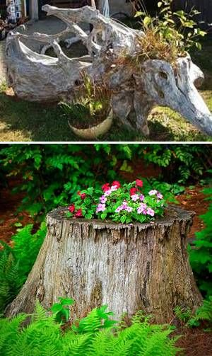 20 Root Artworks And Yard Decorations Bringing Natural Splendor Into Beautiful Garden Design Yard Decor Garden Design Beautiful Gardens