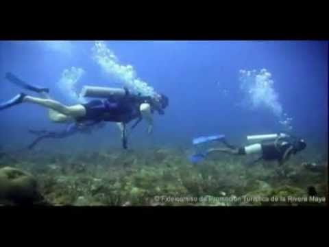 Riviera Maya | Official Promotional Video