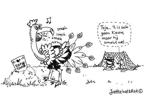 tuinvogeltelling
