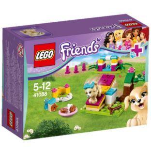 Buy Lego Friends Puppy Training 41088 At Argoscouk Your