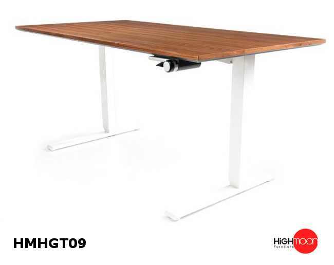 Highmoon Furniture Is Pleased To Offer The Strongest Selection Of Moderate  Motorized Desks In Dubai.