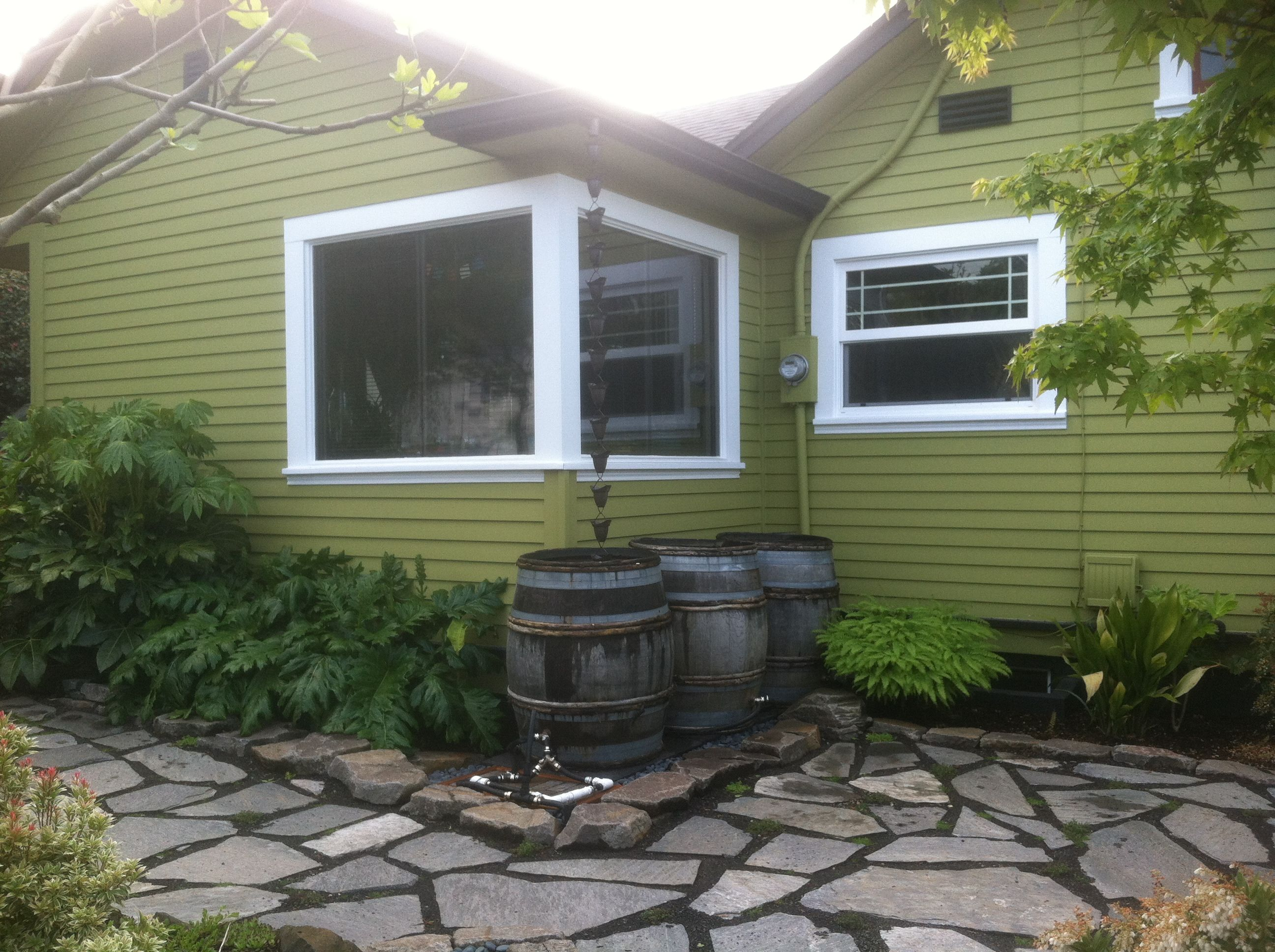 rain barrels in wine barrels