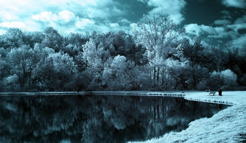 Winter Scenic Home Wall Paper 702 Category Nature Hd Wallpapers Subcategory Forests Hd Wallpapers Nature Photos Landscape Scenery