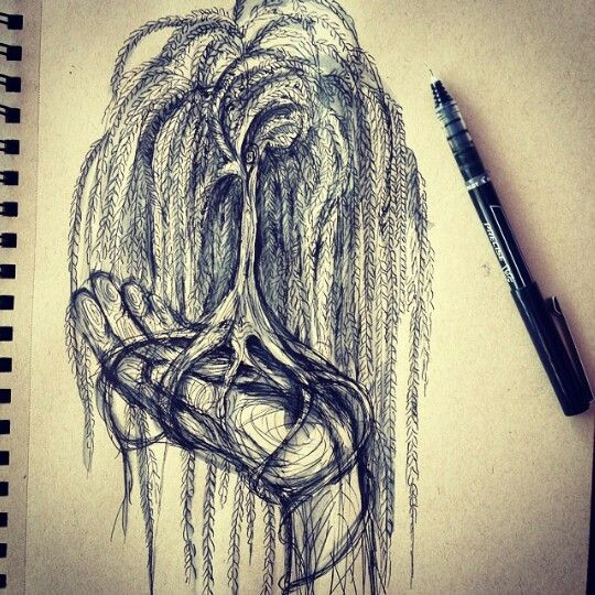 Weeping willow tree PERFECT I FOUND YOU this is what i ...  Weeping willow ...
