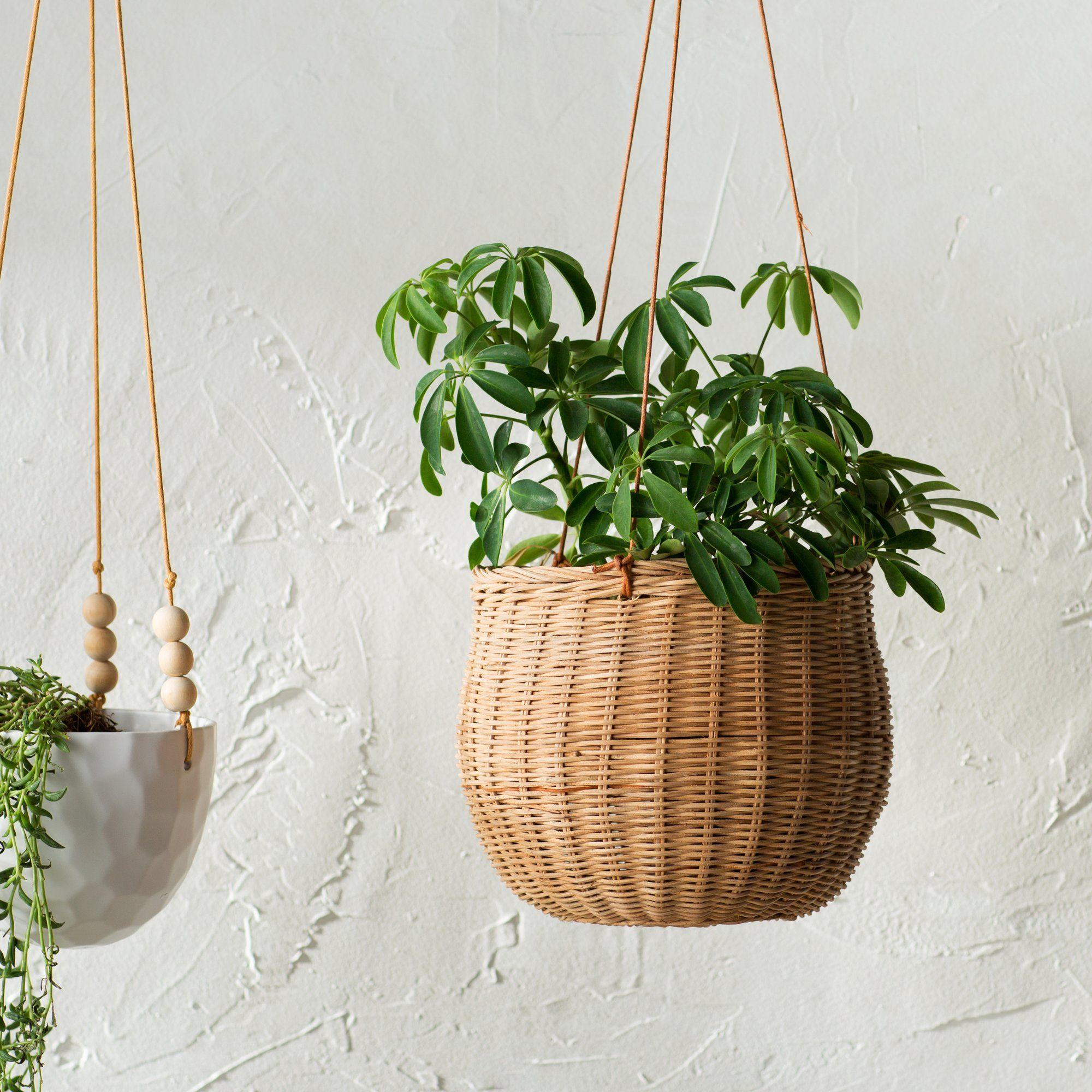 Milano Rattan Hanging Planter Canasto De Mimbre Jardineras Colgantes Plantas Colgantes