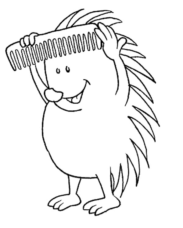Hedgehog Comb His Spine Colouring Pages Coloring Page Bulk Color Coloring Pages Colouring Pages Coloring Books