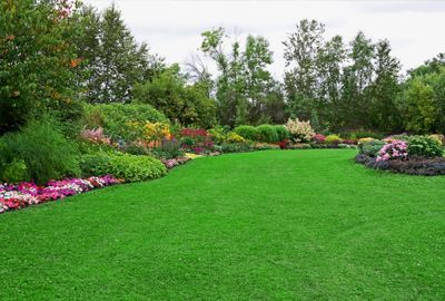 Different Kinds Of Lawn And Garden Ornaments | Lawn ServiceLawn Service