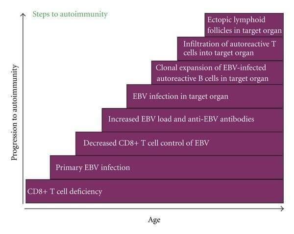 300a2e3c42e395b07a7eaed79261762b - How To Get Rid Of Chronic Epstein Barr Virus