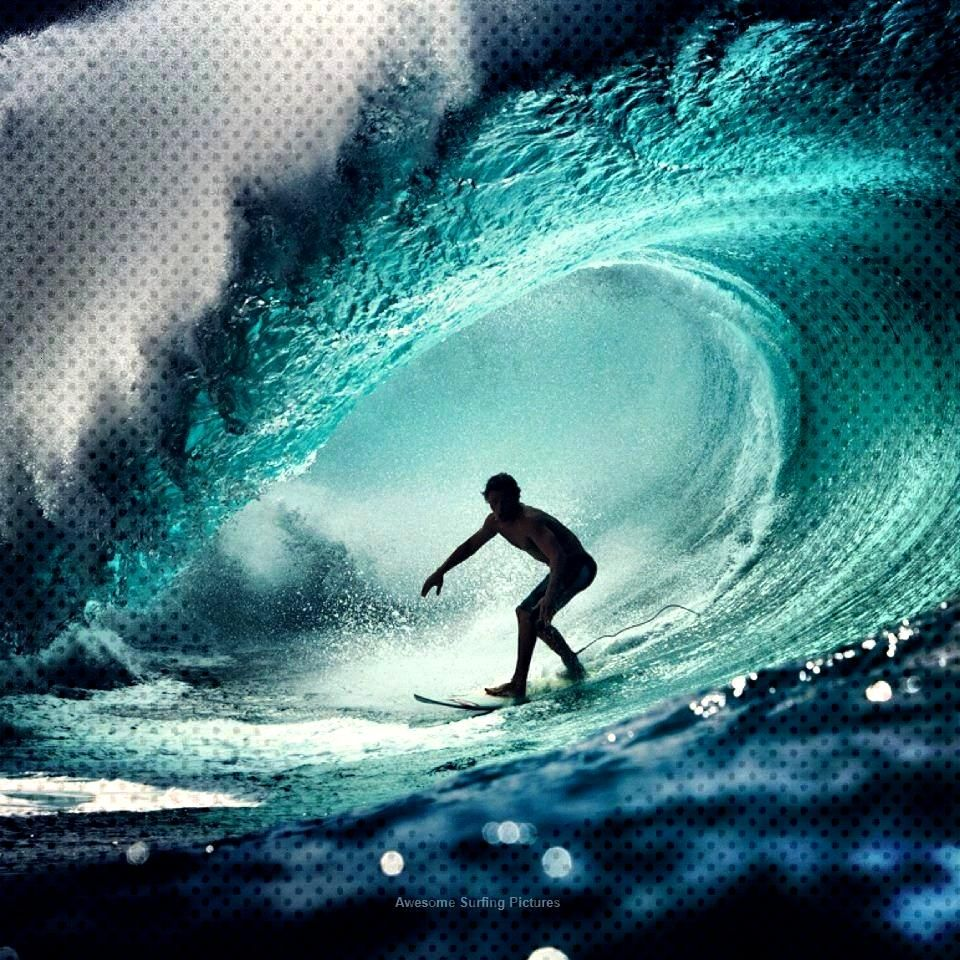 Day 14. Trip the Influx Brah!! Surfs Up, enjoying someone capture a sugary swell is merely magnific