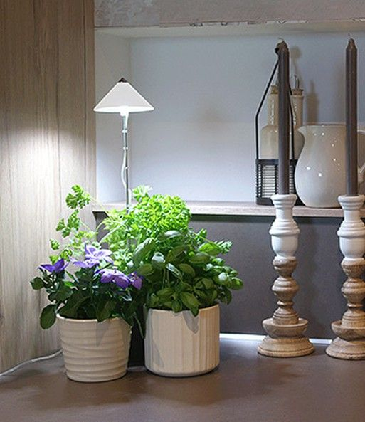 LED Wachstumslampe Fürs Zimmer U0027wei