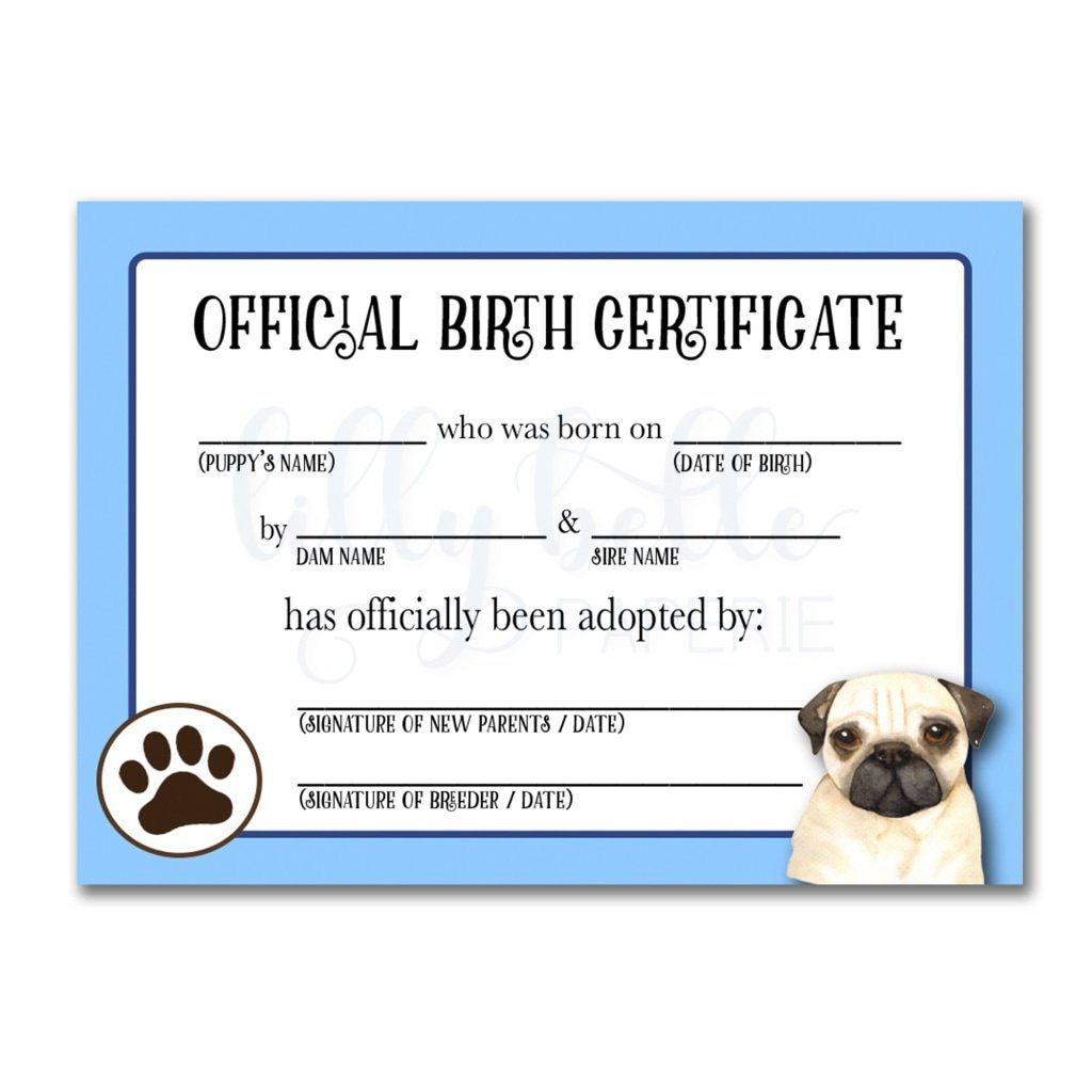 Blue Pug Birth Certificate Adoption Certificate Pet Adoption