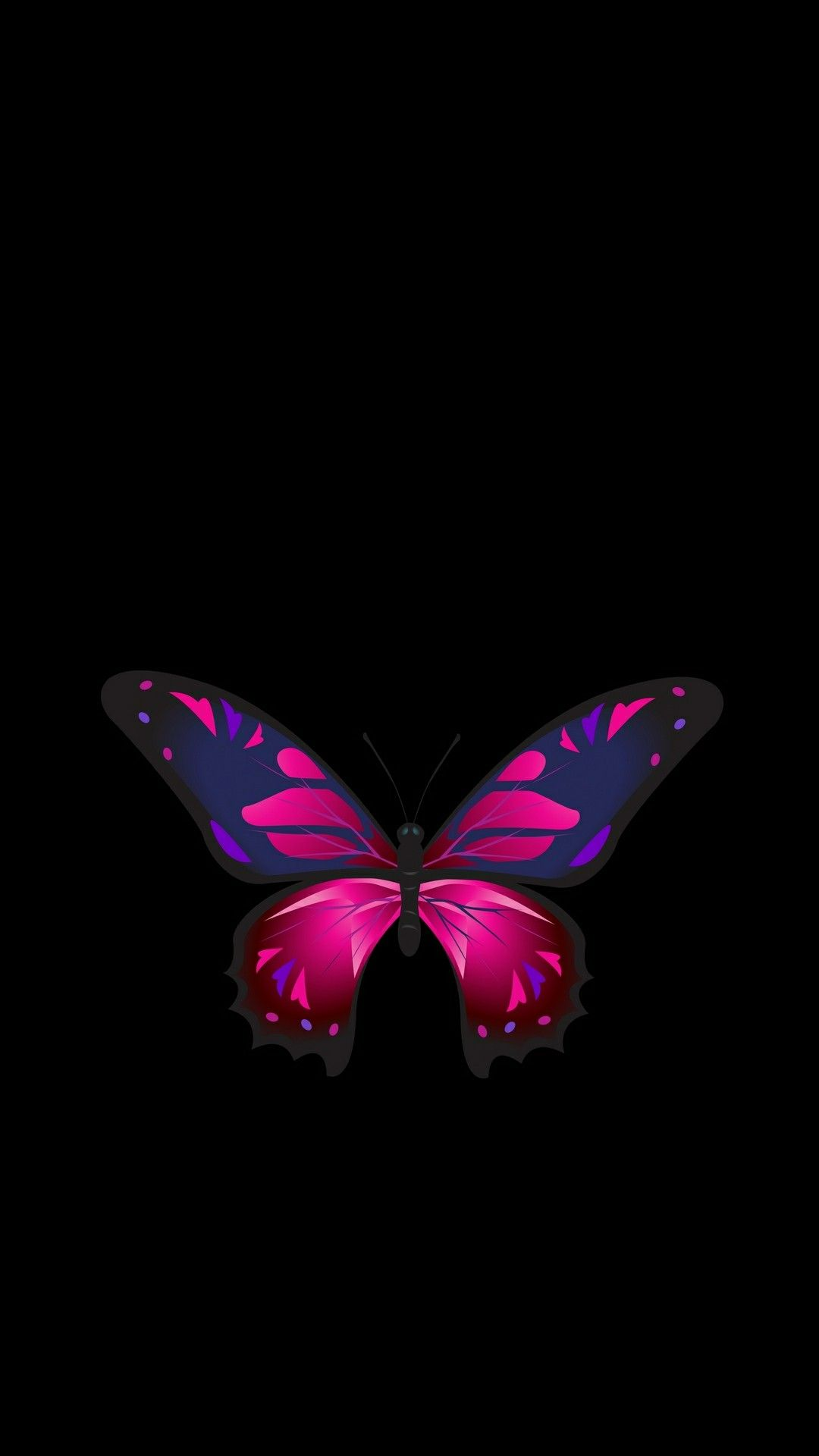 Butterfly With Images Dark Background Wallpaper Butterfly