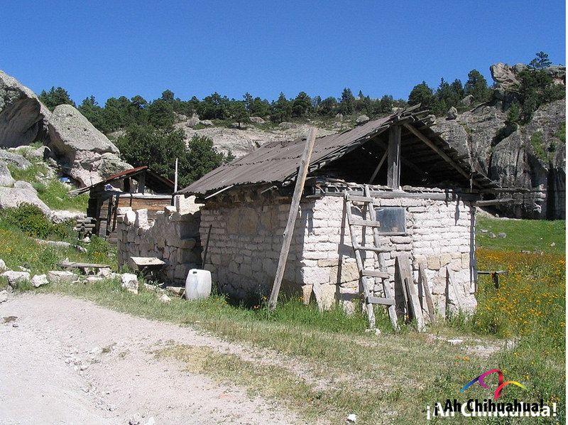 Turismo En Chihuahua Te Habla Como Son Las Viviendas De Los