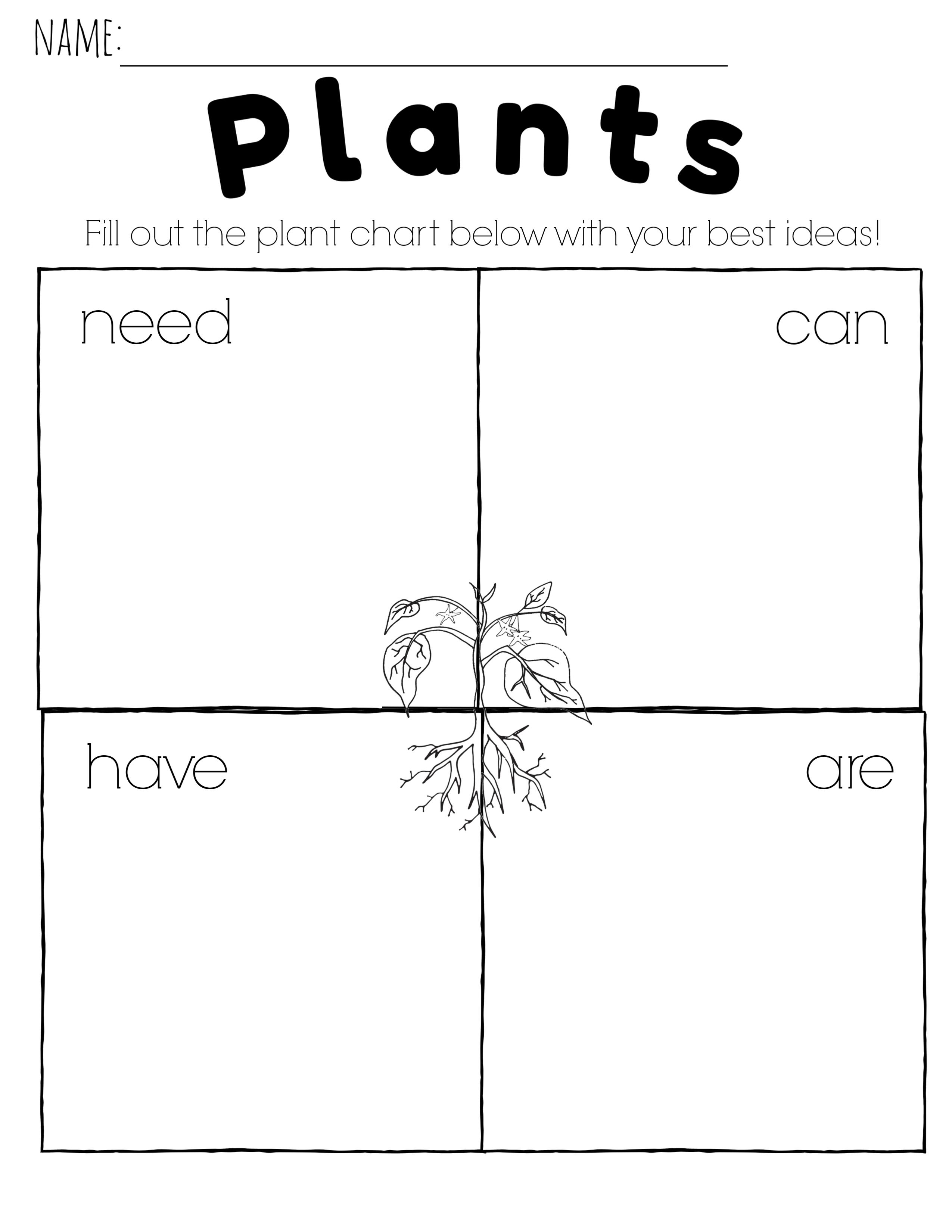 Comparing Plants And Animals In Kindergarten K Ls1 1