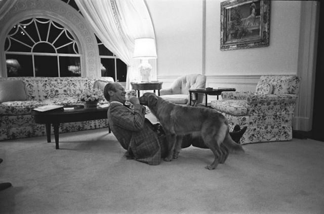 Gerald Ford And Liberty With Images Dogs Golden Retriever