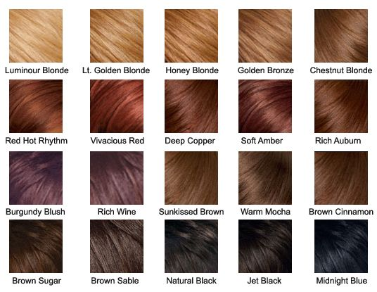 Hair Color Chart | Hair Colors | Pinterest | Hair Coloring, Heart