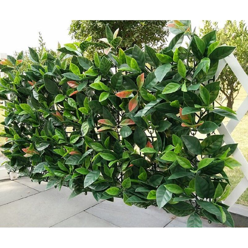 1 5 Ft H X 1 5 Ft W Artificial Hedge Plant Polyethylene Fence Panel In 2020 Artificial Plants Artificial Plants Outdoor Artificial Hedges