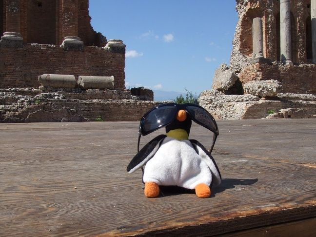Even Pingu likes the sunshine - pinned from a very gloomy England :-(.  Where do you think this is?
