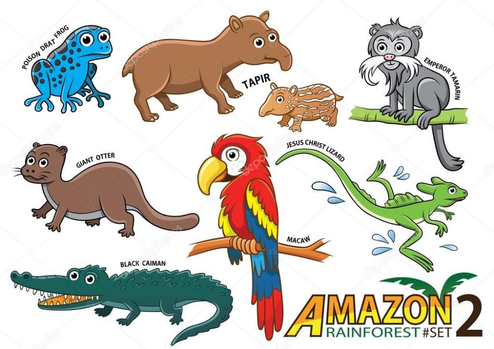 Descargar Conjunto De Dibujos Animados Animales Y Aves En Las Areas De La Amazonia De Sou Imagen De Stock Amazon Animals Cartoon Animals Pet Birds