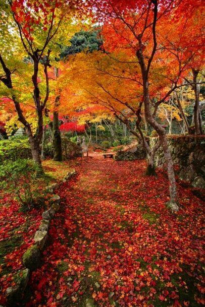 38 Glorious Japanese Garden Ideas: Autumn. ..Glorious Autumn.