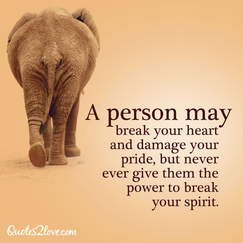 A person may break your heart and damage your pride, but never ever give them the power to break your spirit.