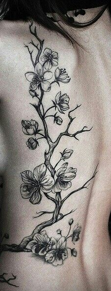 Pin By Sharoni Rajashekar On Tattooed Mom Cherry Tree Tattoos Blossom Tattoo Vine Tattoos