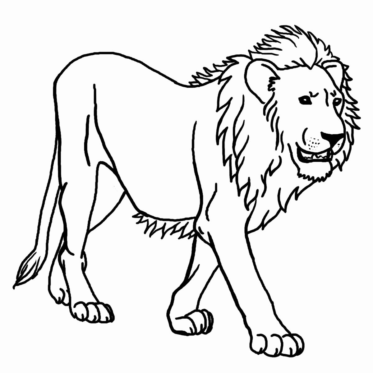 Printable Lion Coloring Pages In