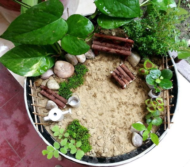 I Always Had A Plan Of Making A Miniature Garden And Couldn