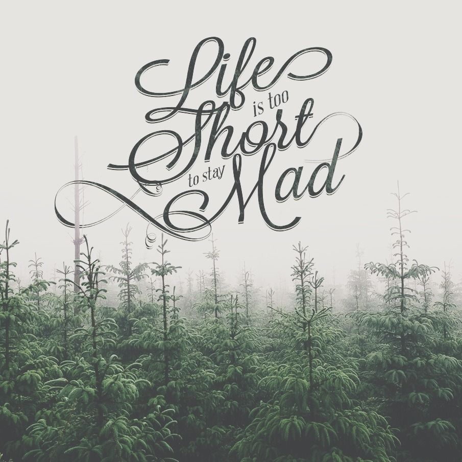 Mad Love Quotes Life Is Too Short To Say Madinstead Shop For A Christmas Tree