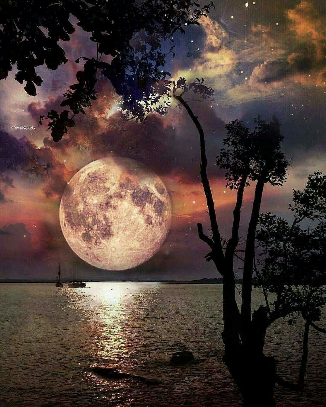 Moonlight And Night Sea View Moonlight Night Sea Beautiful Nature Beautiful Moon Nature Pictures