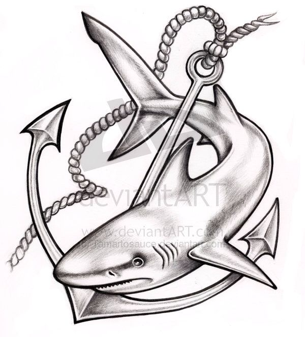 Shark and anchor tat pinterest tatouage requin tatouage et requin - Modele dessin requin ...