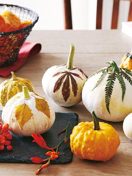 So einfach: Herbstliche Tischdeko selbermachen   Wunderweib