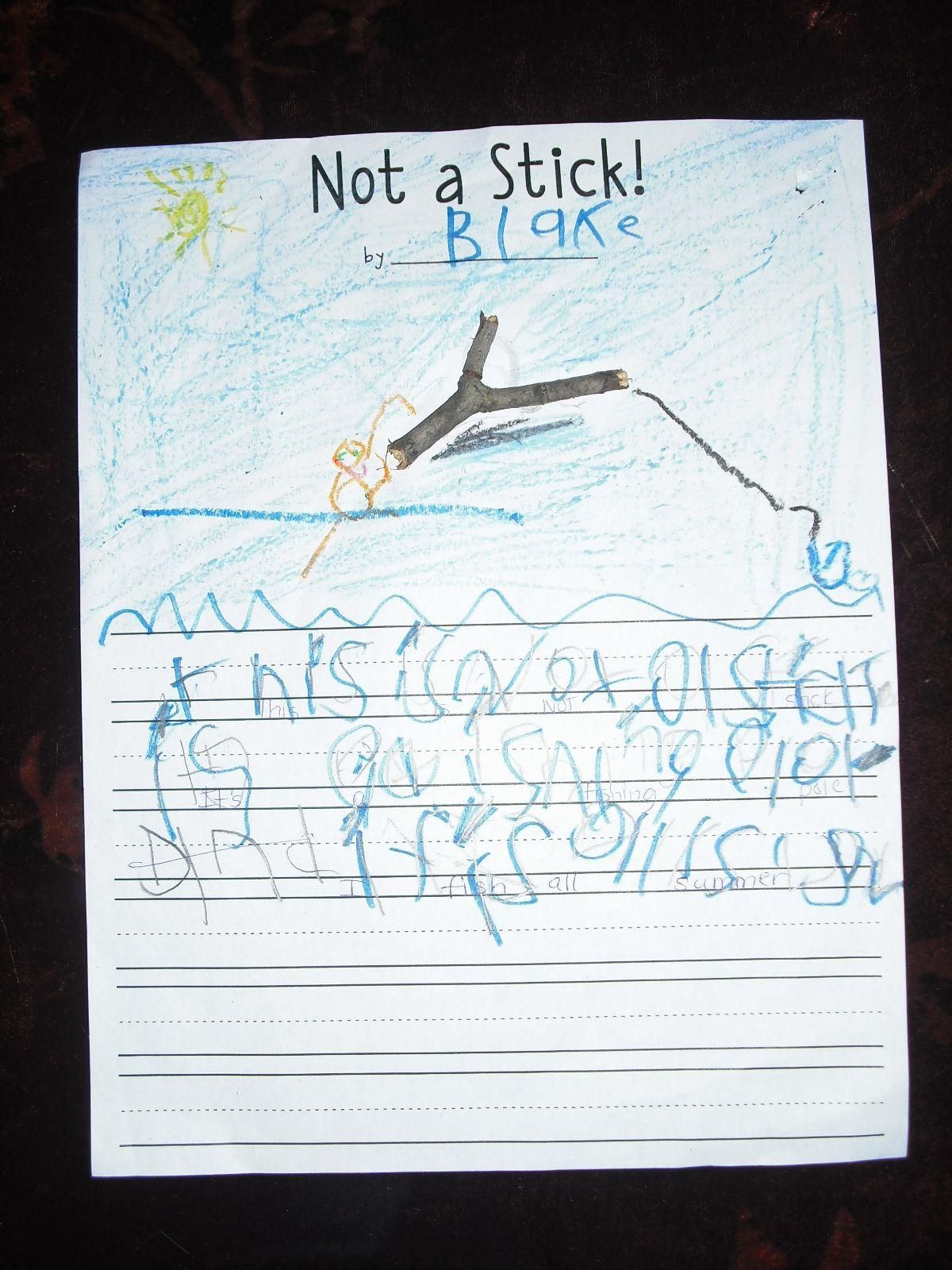 Not a Stick ~  First Grade Project